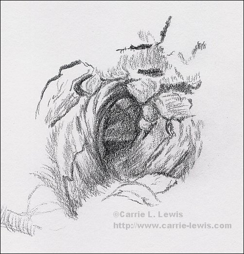 October 3, 2013 Tree Sketch #2