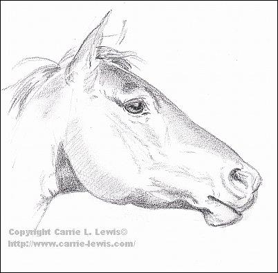 Original horse sketch