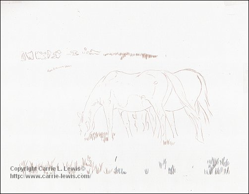 Afternoon Graze Drawing, 2013-03-15