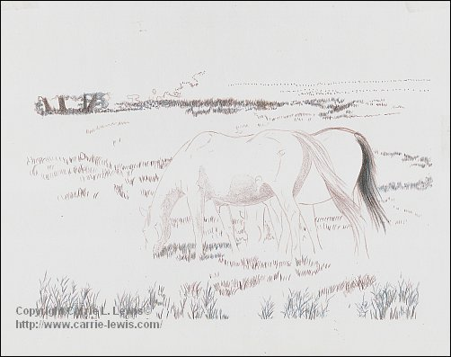 Afternoon Graze Drawing, 2013-03-18