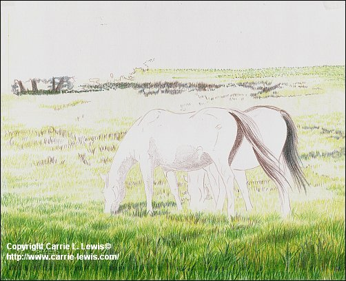 Original Colored Pencil, Afternoon Graze, March 21, 2013