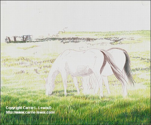 Original Colored Pencil, Afternoon Graze, March 22, 2013