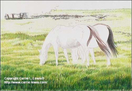 Original Colored Pencil, Afternoon Graze, March 25, 2013