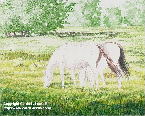 Original Colored Pencil, Afternoon Graze, March 28, 2013