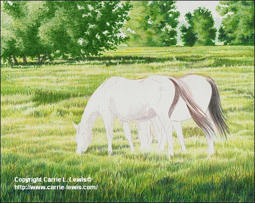 Original Colored Pencil, Afternoon Graze, April 3, 2013