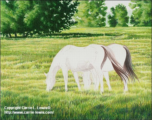Original Colored Pencil, Afternoon Graze, April 5, 2013
