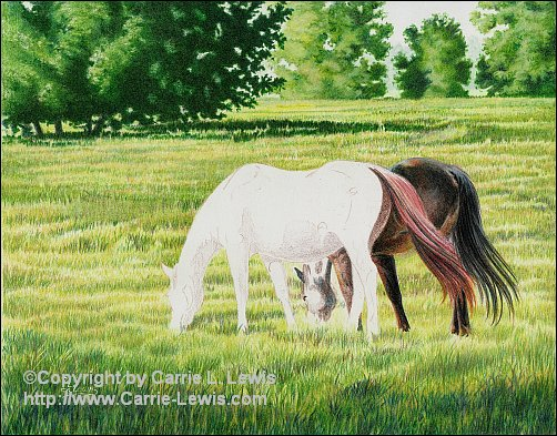 Afternoon Graze, Original Colored Pencil Landscape, April 9, 2013