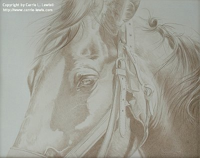 Photo reference for colored pencil painting, Buckles & Belts in CP