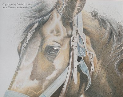 Original Colored Pencil Painting, Buckles & Belts by Carrie L. Lewis