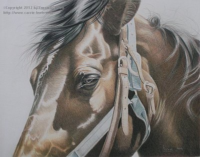 Original Colored Pencil by Carrie L. Lewis, Buckles & Belts in Colored Pencil