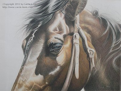 Original Colored Pencil Painting, Buckles & Belts in CP