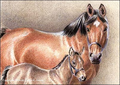 How to Draw a Miniature Drawing in Colored Pencil - Finishing the Drawing