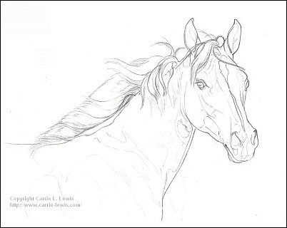 Original Drawing of Fire & Ice Filly