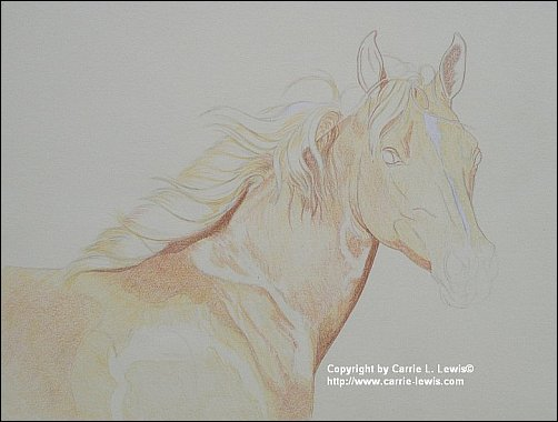 Direct Drawing Tutorial - Palomino Horse - First Color Layers Step 2