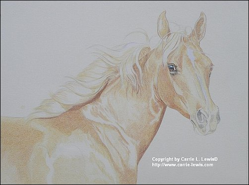 Direct Drawing Tutorial - Palomino Horse - Second Color Layers Step 1
