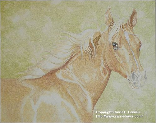 Direct Drawing Tutorial - Palomino Horse - Second Color Layers Step 3