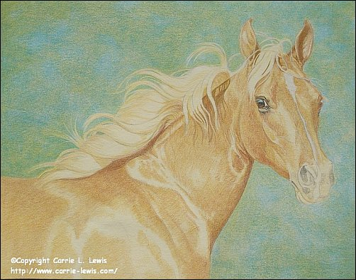 Direct Drawing Tutorial - Palomino Horse - Second Color Layers Step 4