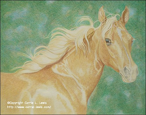 Direct Drawing Tutorial - Palomino Horse - Second Color Layers Step 6