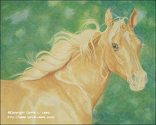 Direct Drawing Tutorial - Palomino Horse - Second Color Layers Step 7