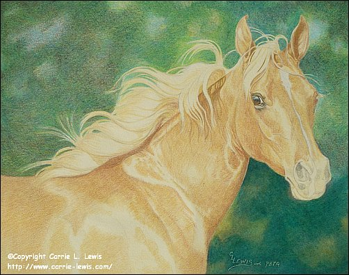 Direct Drawing Tutorial - Palomino Horse - Second Color Layers Step 8