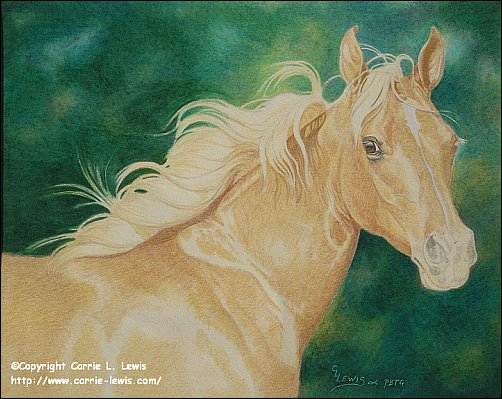 Direct Drawing Tutorial - Palomino Horse - Second Color Layers Step 9