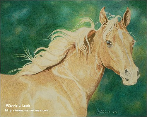 Direct Drawing Tutorial - Palomino Horse - Third Color Layers Step 2