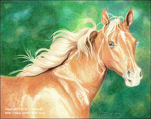 Direct Drawing Tutorial - Palomino Horse - Final Color Layers Step 2