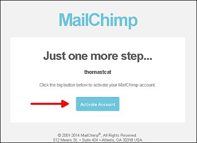 Mailchimp signup screenshot 4