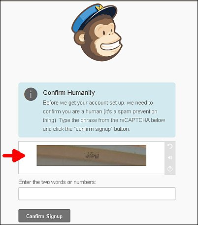Mailchimp signup screenshot 5