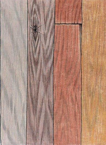 Mastering Wood Grain Illustration