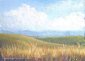 Landscape Study #2 2007