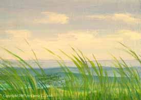 Landscape Study #12 2007