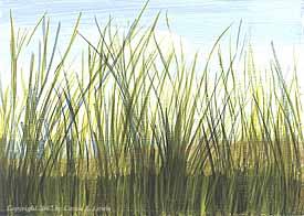 Landscape Study #14 2007