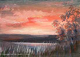 Landscape Study #22 2007