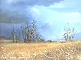 Landscape Study #32 2007