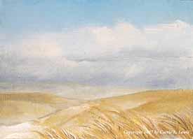 Landscape Study #47 2007