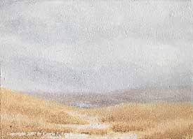 Landscape Study #58 2007