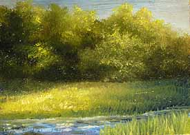 Landscape Study #60 2007
