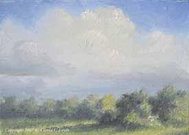 Landscape Study #61 2007