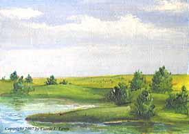 Landscape Study #64 2007