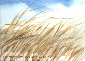 Landscape Study #66 2007