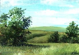 Landscape Study #69 2007