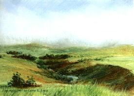 Landscape Study #71 2007