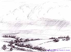Landscape Study #79 2007