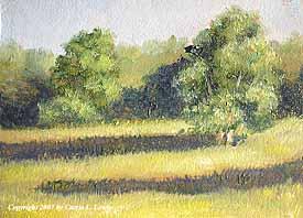 Landscape Study #80 2007
