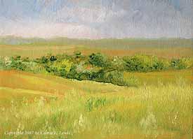 Landscape Study #81 2007