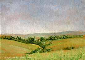 Landscape Study #82 2007
