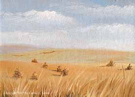 Landscape Study #83 2007