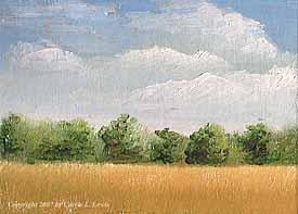 Landscape Study #84 2007