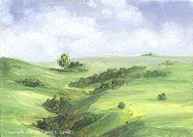 Landscape Study #100 2007
